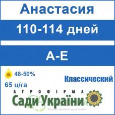 Анастасия - классический (Сады Украины, Сербия)