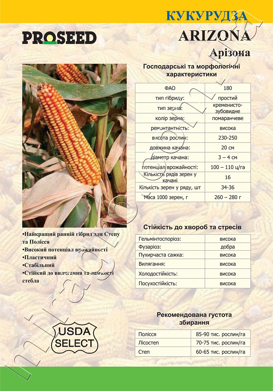 Гибрид кукурузы Алабама (Alabama) - описание каталог