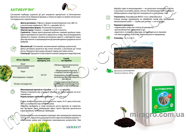 Описание гербицида Антибурьян