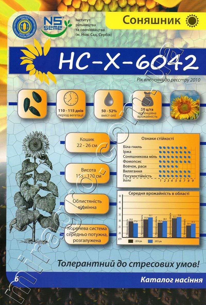 Описание подсолнечника НС-Х-6042